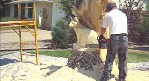 Lueb popoff makes amazing raccoon and fox tree sculpture beauty of